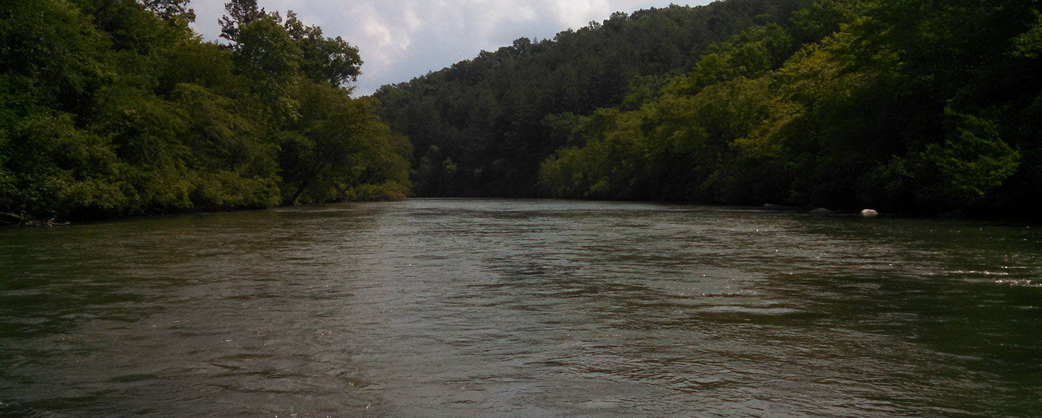 Toccoa river fishing and blue ridge float trips reel 39 em for Lake blue ridge fishing