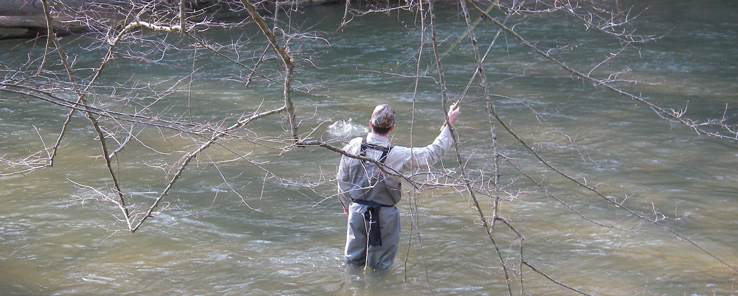 Toccoa river reel em in for Toccoa river fishing